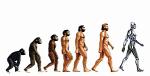 homme-evolution